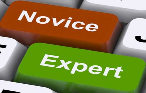 Expert 3